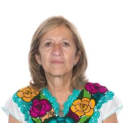 Foto de la Diputada de la NaciónMARIA ROSAMARTINEZ
